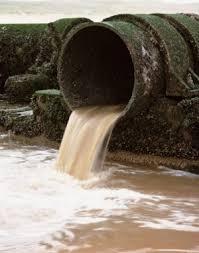 Segundo a ONU, água poluída mata mais do que violência